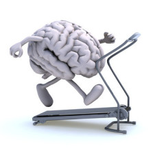 Gehirntraining - ein Leben lang